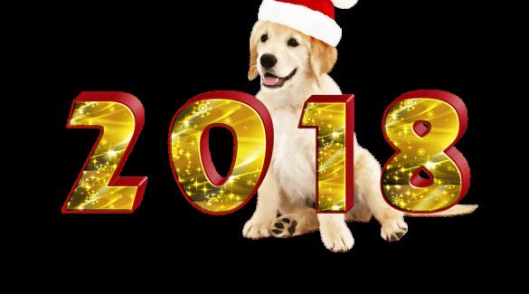 С Новым годом собаки!